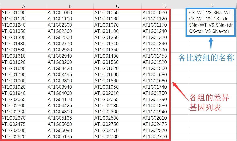 attachments-2019-07-xTnO5cNL5d1eb1e8bc539.jpg