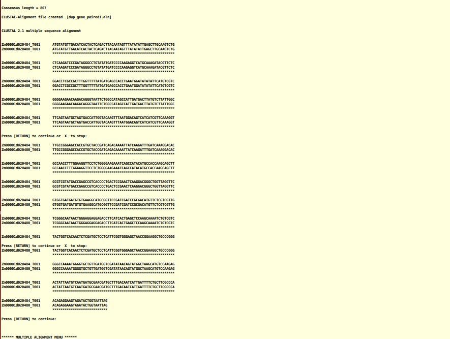 attachments-2020-04-cU3hRZIG5e92a8fa41684.png