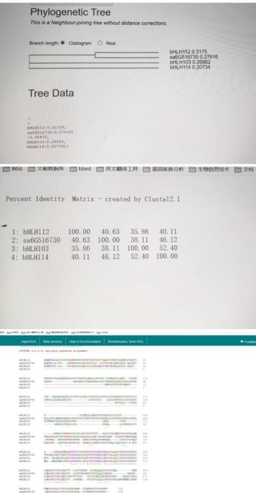 attachments-2020-05-FIj6B8Ir5ec48fc768488.jpg