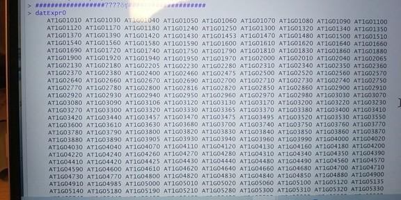 attachments-2020-05-p6WjVIDd5ec3ed51b237c.jpg