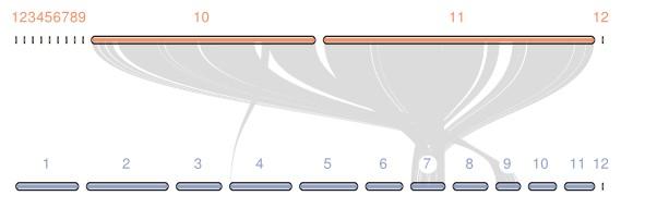 attachments-2020-07-VfFX2ufM5f181c2509fda.png