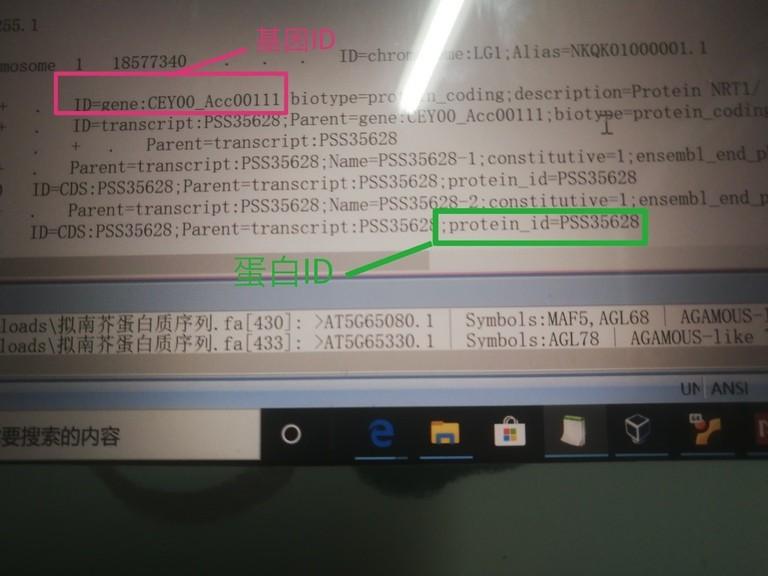 attachments-2020-08-rsBY9SFo5f297a58997e7.jpg