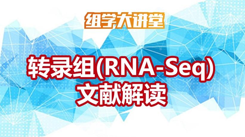 转录组RNA-seq文献解读